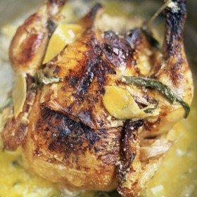 Sommerlad Heritage Style chicken in milk