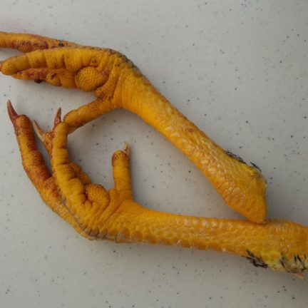 Buy chicken feet brisbane